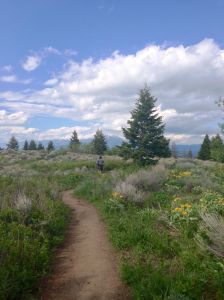 trail running triple tree in Bozeman, Montana